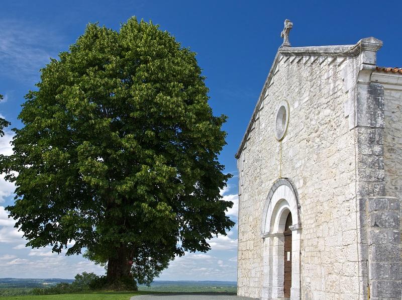 Eglise Saint-Mandé-et-Notre-Dame